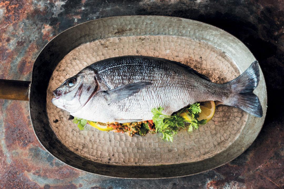 Salt-baked fish with harissa paste recipe