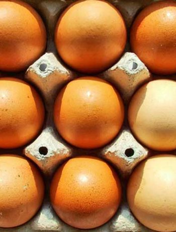 How to check if an egg is still fresh? Egg freshness test