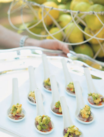 Ceviche of yellowtail, avocado and preserved lemon salsa recipe