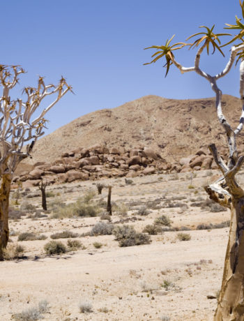 Richtersveld Transforntier Park Desert