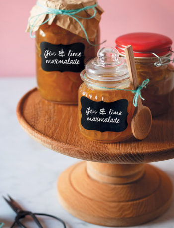 Gin and lime marmalade recipe