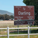 8 Places to visit in Darling on the West Coast of South Africa
