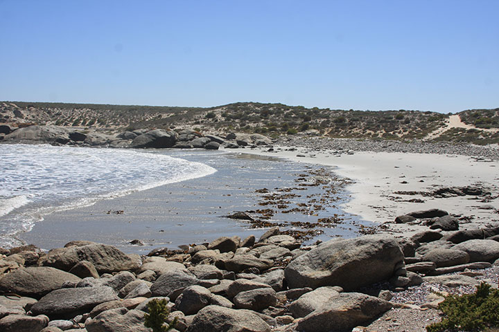 6 Things to do at Namaqua National Park
