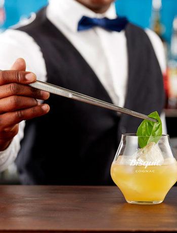 Become a Cognac connoisseur overnight with Bisquit Cognac
