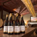 Win with Zandvliet Wine Estate