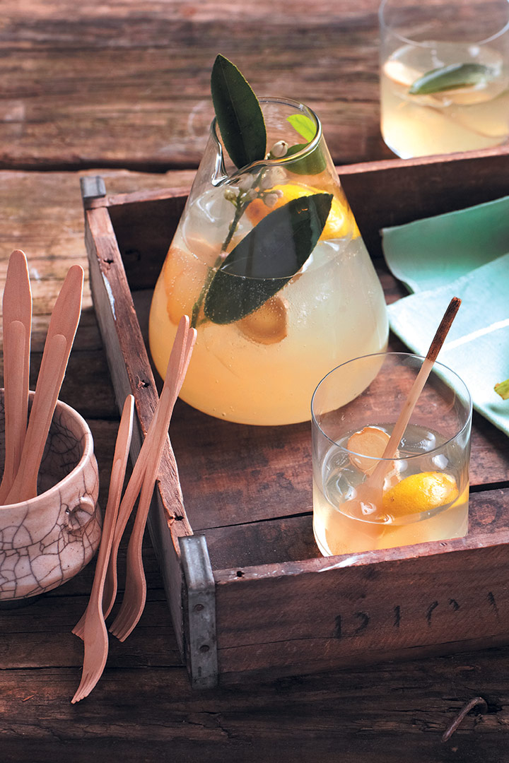 Home-made lemon and ginger tonic