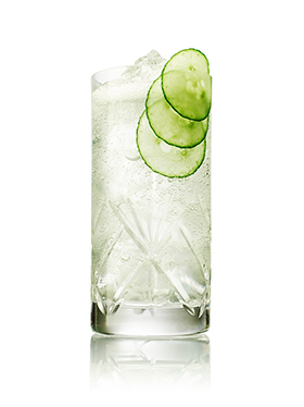 G&T Facts