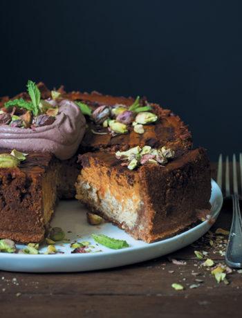 Pumpkin and vanilla cheesecake with dark chocolate and cocoa cream