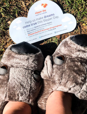 slipper day 2019